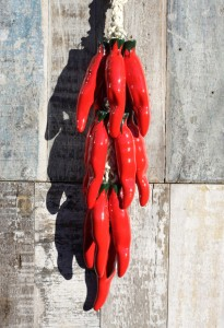 Red ceramic Chile Cristalino